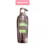 Hybeauty Scalp Shampoo Conditioner แชมพู 1 ขวด