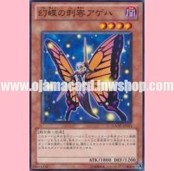 GAOV-JP013 : Swallowtail Butterspy (Common)