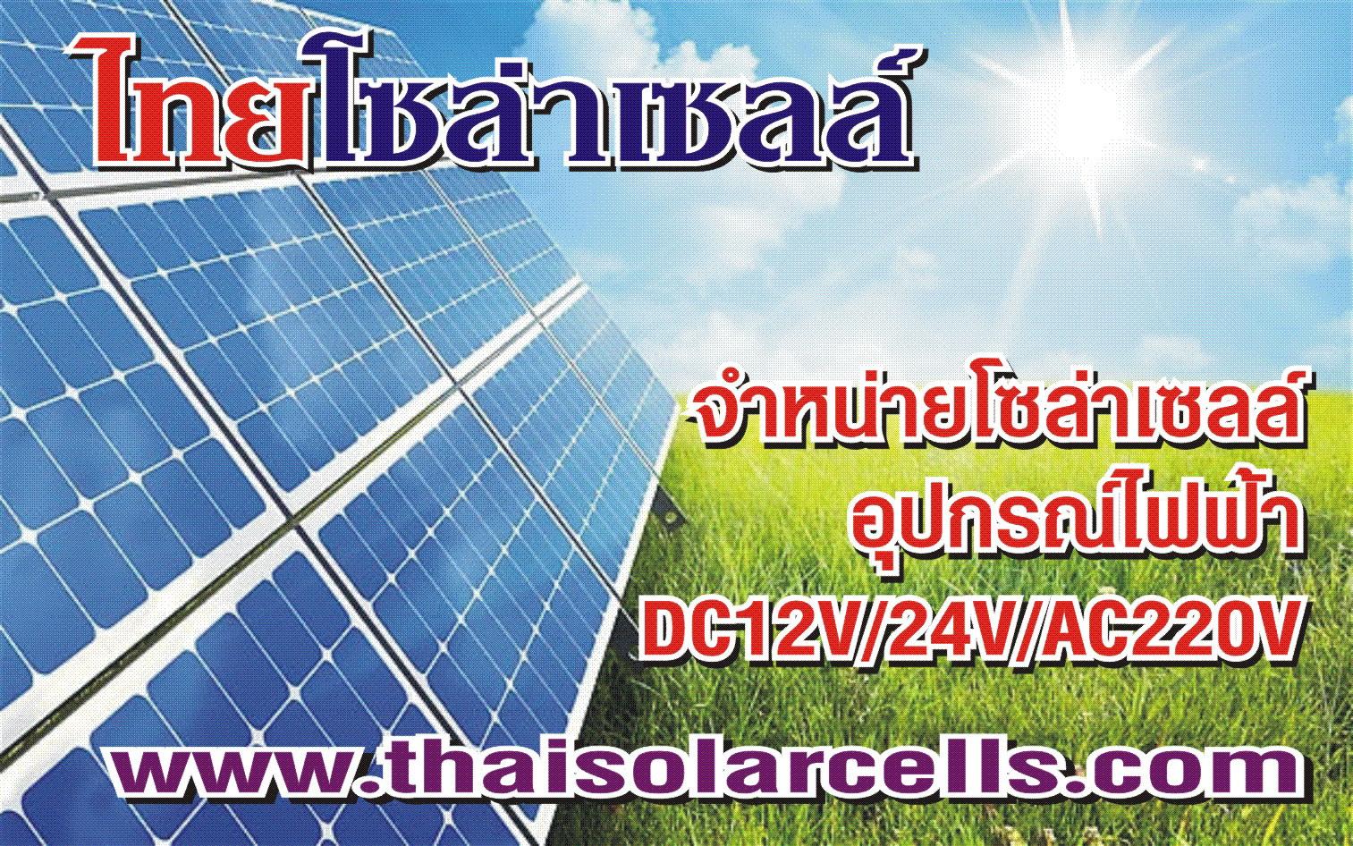 http://www.thaisolarcells.com