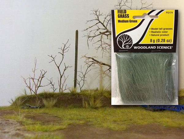 FG174 ทุ่งหญ้าสีเขียวกลาง MEDIUM GREEN FIELD GRASS