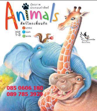 บัตรภาพ สัตว์โลกเพื่อนรัก คำศัพท์ (Animals)