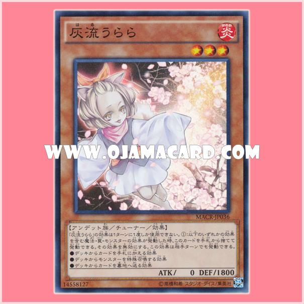 MACR-JP036 : Ash Blossom & Joyous Spring / Haru Urara (Super Rare)