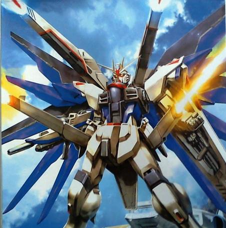 MG 1/100 ZGMF-X10A Freedom Gundam [Momoko]