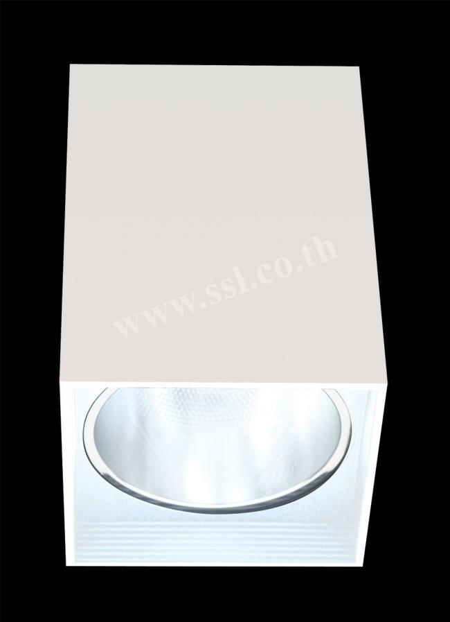 โคมไฟเพดาน SL-3-TW-553