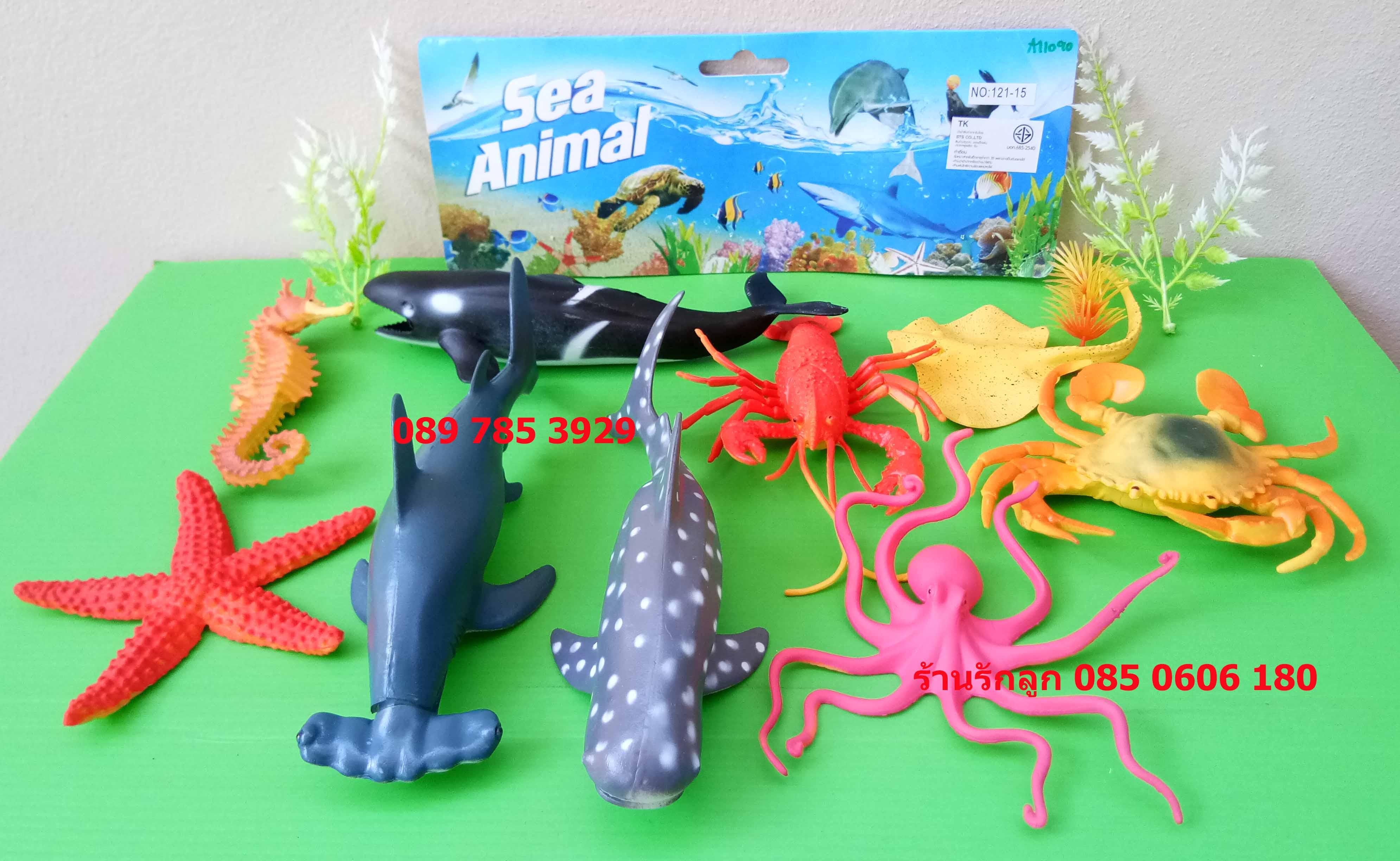 สัตว์ทะเลจำลองตัวใหญ่ Sea Animal