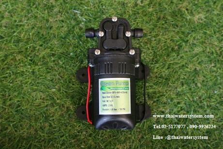 ปั๊มน้ำ DC12V Green-01 แรงดัน 4.8 บาร์ ( No Pressure switch )