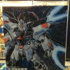 STRIKE FREEDOM GUNDAM Z.A.F.T. Limited