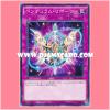 ST16-JP040 : Pendulum Reborn (Common)