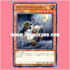 COTD-JP032 : Treasure Pander (Common)