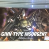 GINN TYPE INSURGENT