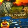 African Safari / ตะลุยซาฟารี