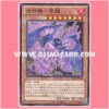 CBLZ-JP041 : Pyrotech Mech - Shiryu / Flame Gear - Purple Dragon (Common)