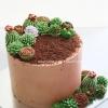 Castus Cake Design