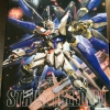 Strike Freedom Gundam MG