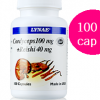 Lynae Cordeceps 100 mg.+Reishi 40mg. 100 Caps