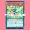 MACR-JP005 : Performapal Drago Remora / Entermate Drago Remora (Rare)