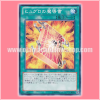 REDU-JP058 : Spellbook of Power (Common)