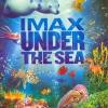 IMAX: Under The Sea : มหัศจรรย์โลกใต้ทะเลลึก