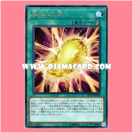 DP19-JP009 : Super Cocoon of Evolution (Rare)