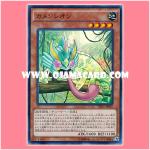TRC1-JP025 : Masked Chameleon / Chamenleon (Super Rare)