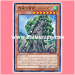 PRIO-JP021 : Sylvan Sagequoia / Sherman, Wise Tree of Shinra (Rare)