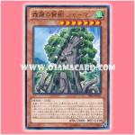 PRIO-JP021 : Sylvan Sagequoia / Sherman, Wise Tree of Shinra (Rare)