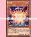 SHSP-JP035 : Aratama (Rare)