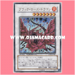 DT04-JPB01 : Black Rose Dragon (Duel Terminal Ultra Parallel Rare)