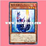SOFU-JP003 : Salamangreat Foxy (Common)
