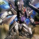 MG (008) 1/100 GUNDAM STRIKE E + I.W.S.P. Rukas Odnel Use