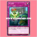 FLOD-JP080 : Shrub Serpent (Common)