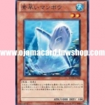 EXP4-JP005 : Nimble Sunfish (Common)