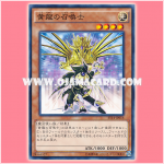 ST14-JP016 : Yellow Dragon Summoner (Common)