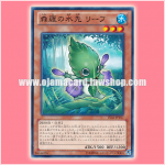 LVAL-JP017 : Sylvan Marshalleafo / Leaf, Water Flow of Shinra (Common)