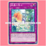 LVAL-JP073 : Sylvan Blessing / Shinra's Blessing (Common)