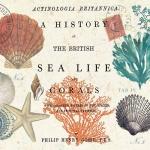 ทะเล Sea Life กระดาษแนปกิ้น เดคูพาจ 1331576