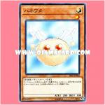 SR05-JP024 : Hanewata / Winged Cotton (Common)