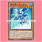 LTGY-JP039 : Tidal, Dragon Ruler of Waterfalls (Super Rare)