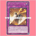 DP10-JP029 : Card of Sacrifice / Life-Risking Treasure Cards (Rare)