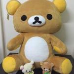 ตุ๊กตา Rilakkuma ขนาดใหญ่ 40 นิ้ว ลิขสิทธิ์แท้