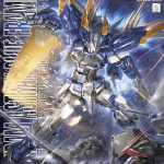 Gundam Astray Blue Frame D (MG)