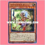 DP18-JP008 : Amazoness Princess (Ultra Rare)