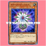 SD32-JP021 : Glow-Up Bulb (Common)