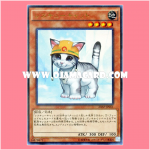 20AP-JP061 : Rescue Cat (Ultra Parallel Rare)