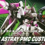 HG SEED (56) 1/144 Arms Astray PMS Custom