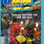 โมเดลสัตว์ทะเล แมวน้ำ ปลากระเบน กุ้ง ฉลาม ปลาหมึก ปลาดาว ปู เต่า
