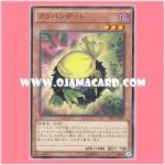 CPL1-JA002 : Kuribandit (Rare)