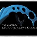 มีดซ้อมคารัมบิตเหยี่ยวทะเล Sea Hawk Claws Karambit Trainer Knife