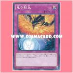 SR02-JP036 : Dragon's Rebirth (Common)