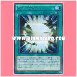 20AP-JP001 : Passionate Duelists (Secret Parallel Rare)
